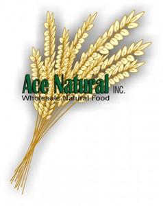Ace-large-logo