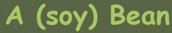 A (Soy) Bean logo
